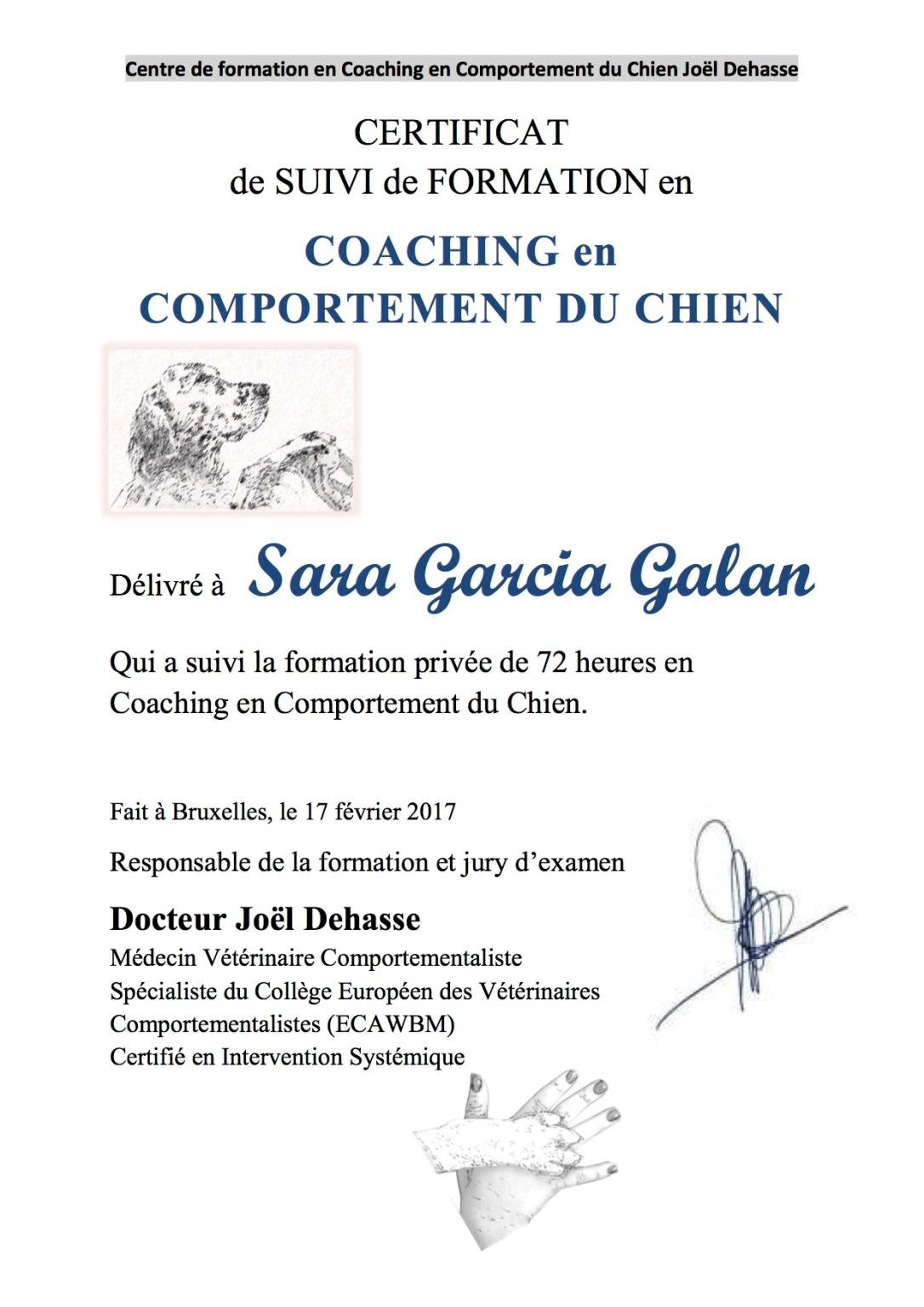garcia galan 2017-02-17 joel dehasse